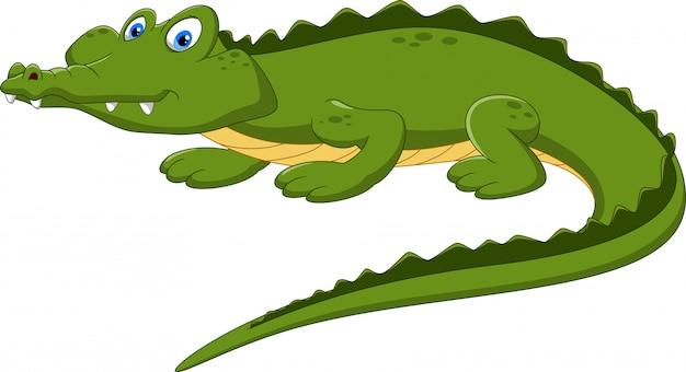 Desenho de crocodilo