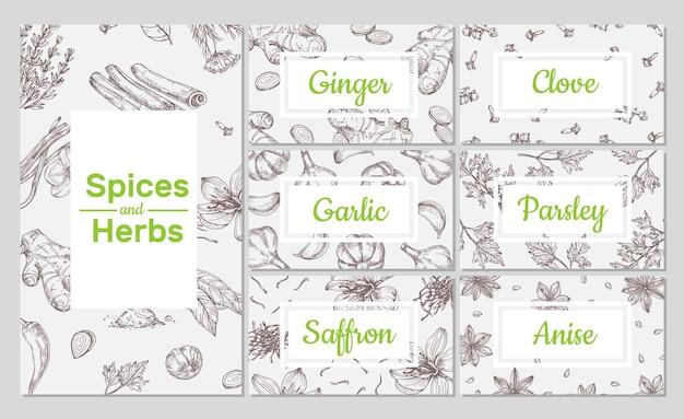 Desenho de especiarias. mão-extraídas ervas orgânicas culinárias. gengibre e alho, cravo e anis. modelos de design, folhetos e cartões de embalagens de vetor. ilustração de ingredientes culinários e ervas orgânicas de especiarias