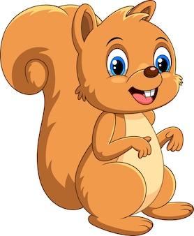 Desenho de esquilo fofo