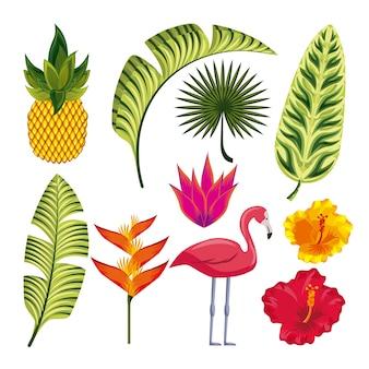 Desenho de flor tropical