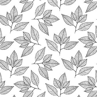 Desenho de folha desenho patern
