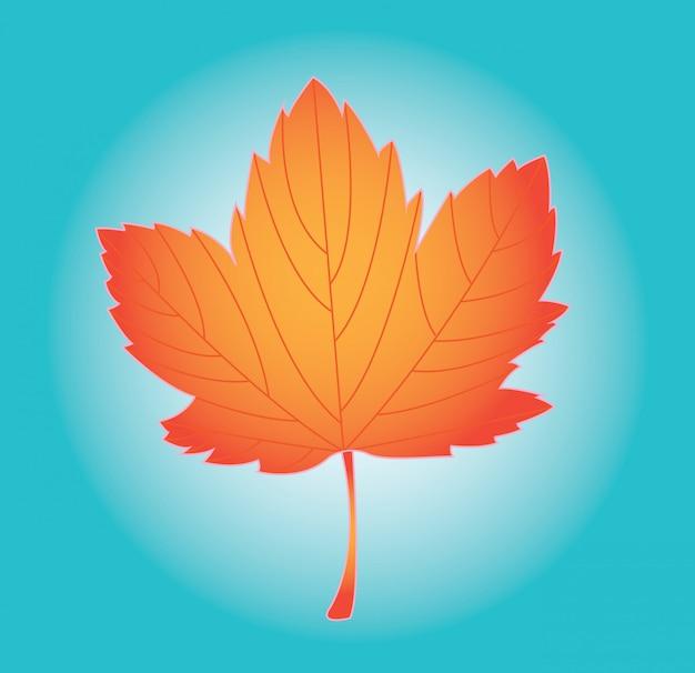 Desenho de folhas