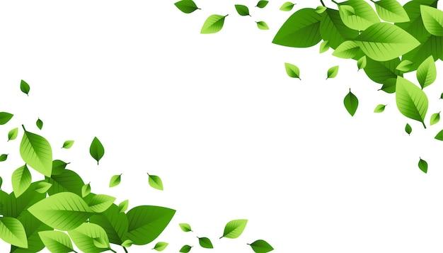 Desenho de fundo espalhado de folhas verdes