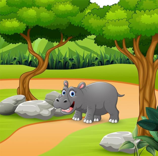 Desenho de hipopótamo andando na estrada