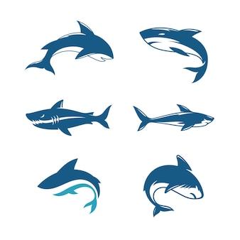 Desenho de ícone de ilustração de tubarãotemplate vector