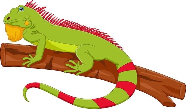 Desenho de iguanas fofas em branco