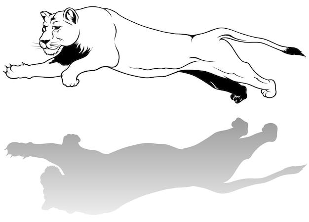 Desenho de leoa saltitante com sombra
