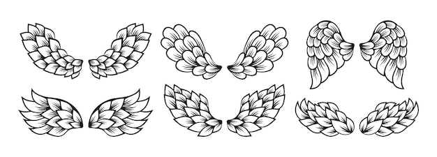 Desenho de linha de ícone de asa definir vetor de logotipo alado de sinal