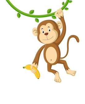 Desenho de macaco segurando uma banana