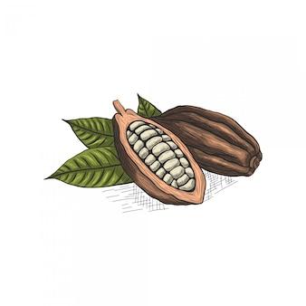 Desenho de mão de chocolate e folhas