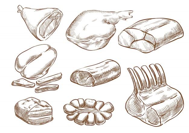 Desenho de mão de desenho de vetor de conjunto de carne
