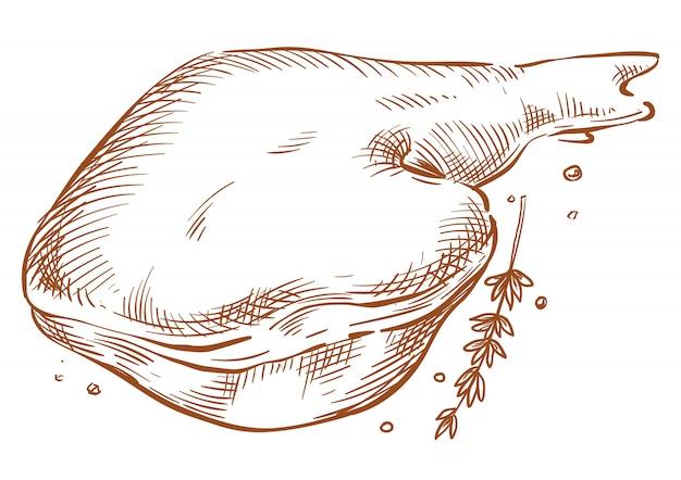 Desenho de mão de desenho de vetor de presunto