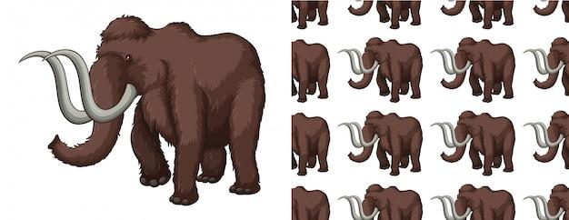Desenho de padrão de mamute isolado
