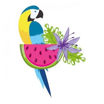 Desenho de papagaio pássaro tropical