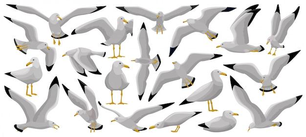 Desenho de pássaro gaivota definir ícone.