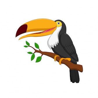 Desenho de pássaro tucano bonito