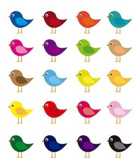Desenho de pássaros coloridos isolado sobre o vetor de fundo branco