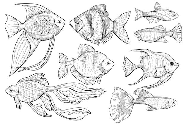 Desenho de peixe. ilustração de desenho animal de peixes de água doce e oceano em estilo gravado. comida e item de esporte de pesca em fundo branco. ícone de menu de comida de criatura de água desenhada de mão.