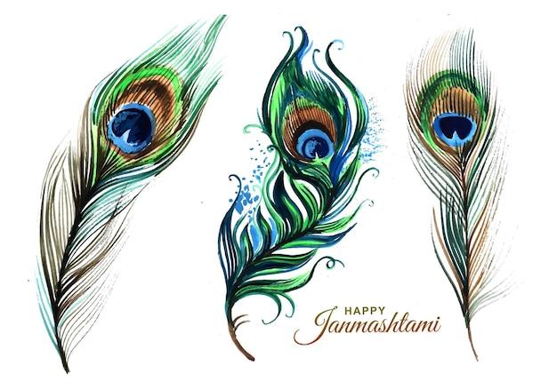 Desenho de penas de pavão desenhado à mão