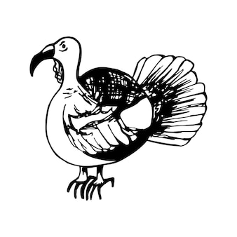 Desenho de peru para cartões e menu de design sazonal de ação de graças. ilustração do doodle