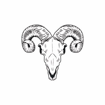 Desenho de ram skull. ilustração de mão desenhada.