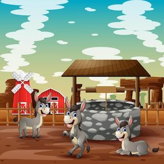 Desenho de três burros brincando perto de um poço em uma fazenda