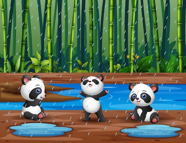 Desenho de três pandas brincando sob a chuva