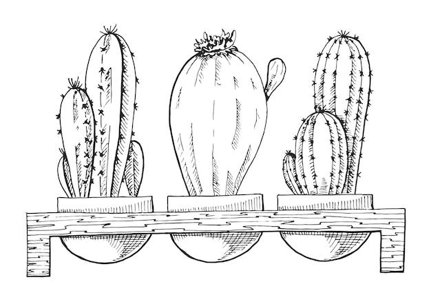 Desenho de três suculentas em vasos em um suporte de madeira.