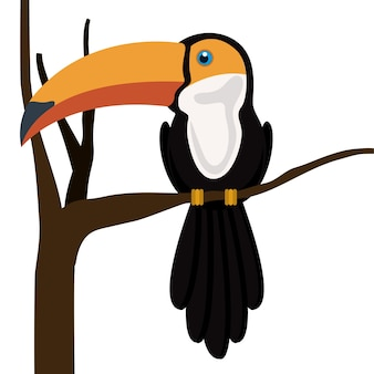 Desenho de tucano