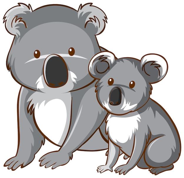 Desenho de urso coala mãe e bebê em fundo branco