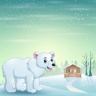 Desenho de urso polar bonito no inverno