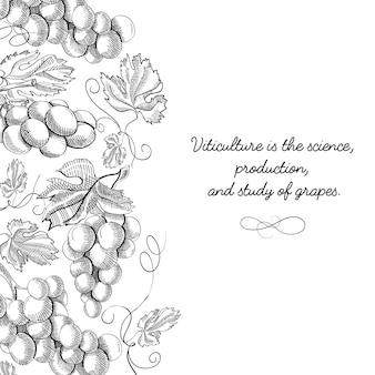 Desenho decorativo original doodle de cartão postal original desenhado à mão com letras sobre viticultura é ciência