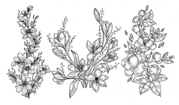 Desenho e esboço de mão de flores
