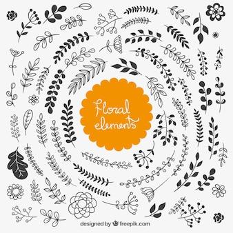 Desenho elementos florais