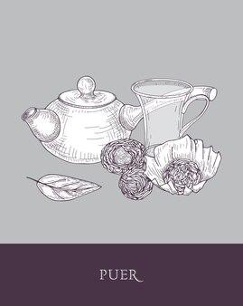 Desenho monocromático de bule com cabo longo, xícara de vidro transparente e folhas de chá puer em cinza