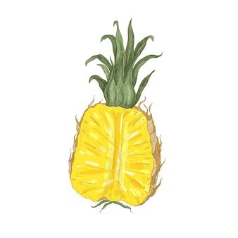 Desenho natural elegante de abacaxi fresco cortado isolado no branco