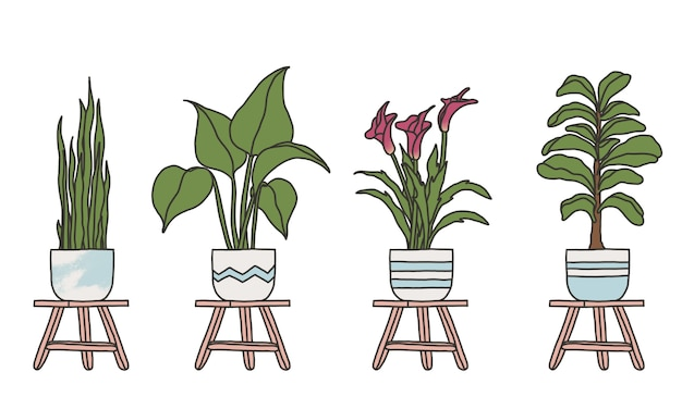 Desenho simples de plantas em vaso desenhado à mão
