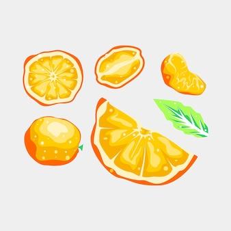 Desenho vetorial de frutas de coleção de laranja e folha