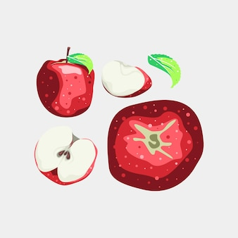 Desenho vetorial de frutas para coleção de maçã e folhas