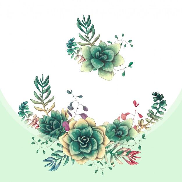 Desenho vetorial de suculentas coloridas verde