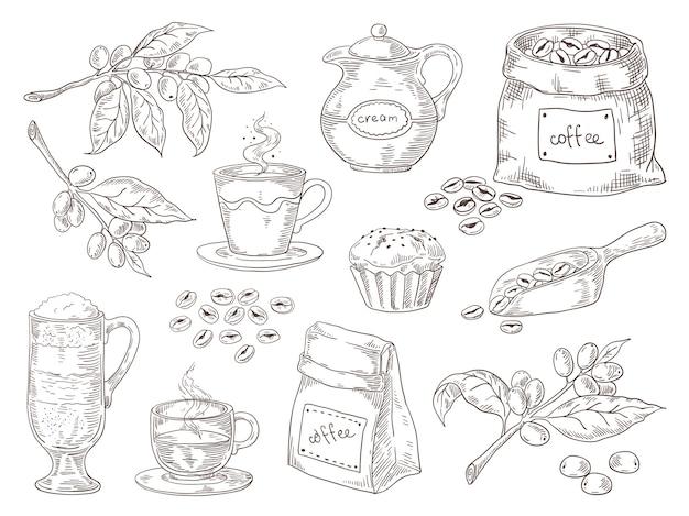 Desenho vintage de folhas de café, ramo de grãos torrados e saco