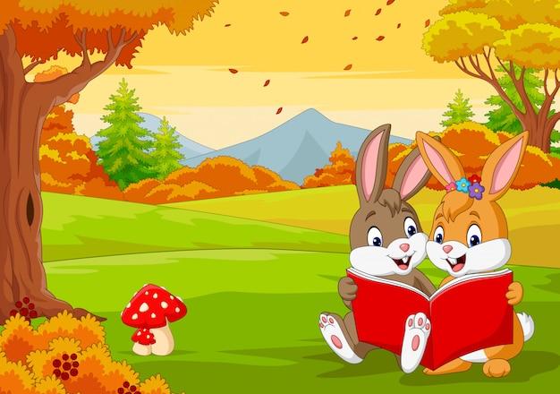 Desenhos animados casais de coelhos, lendo um livro na floresta de outono