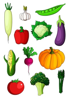 Desenhos animados coloridos vegetais saudáveis