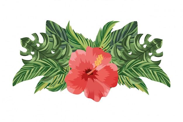Desenhos animados da flor da natureza