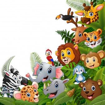 Desenhos animados da floresta dos animais encontram-se junto