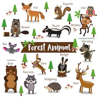 Desenhos animados de animais de floresta com nome de animais