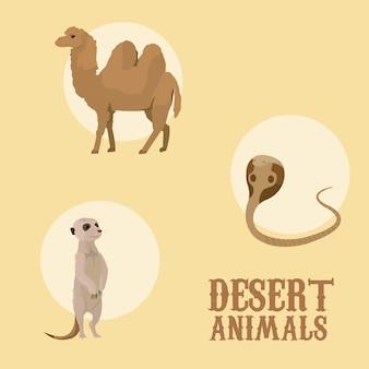 Desenhos animados de animais do deserto