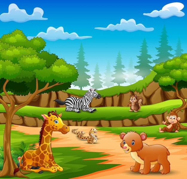 Desenhos animados de animais felizes na cena da natureza