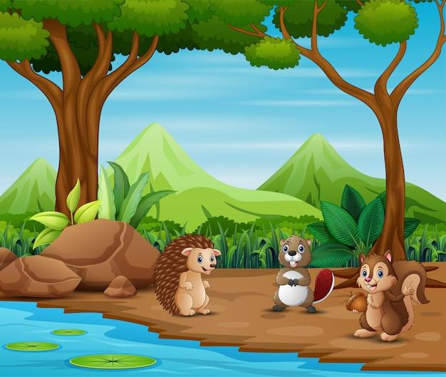 Desenhos animados de animais que vivem na floresta