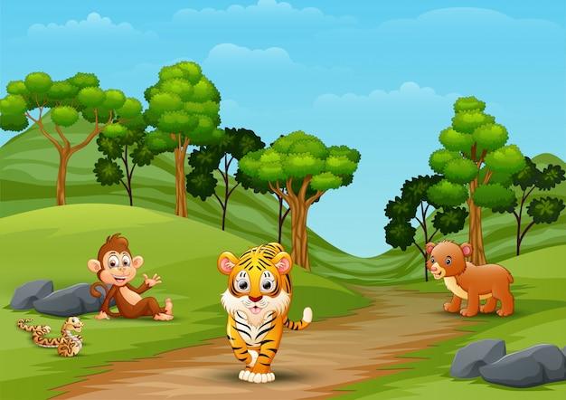 Desenhos animados de animais selvagens brincando na selva